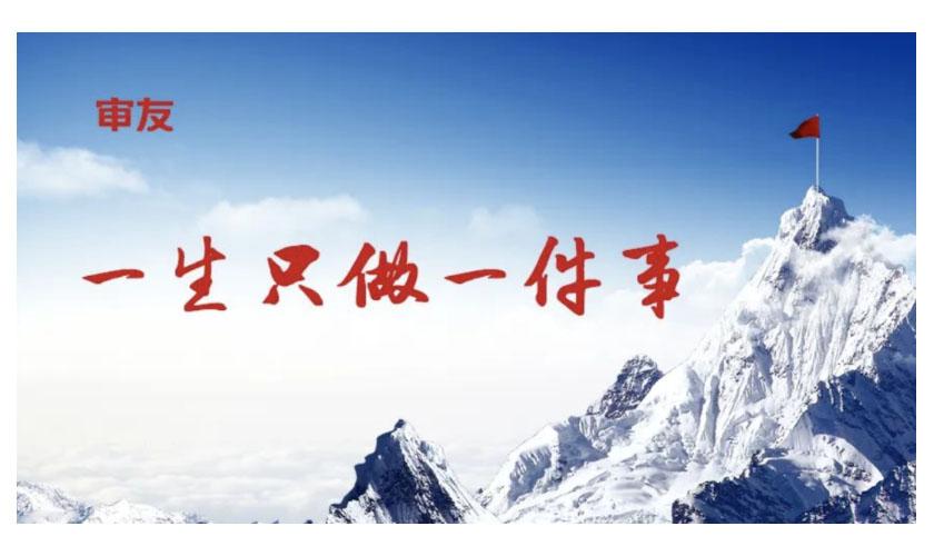 用友审计 || 祝贺天津审友软件有限公司正式成立!!!